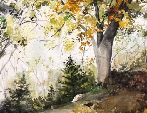 Ray Hendershot Exercise: Fully Foliated Trees