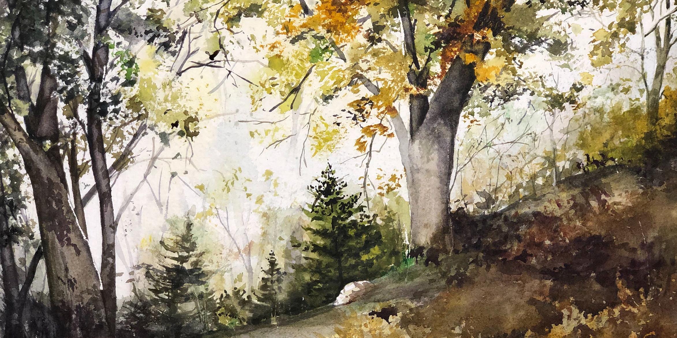 Ray Hendershot Exercise: Fully Foliated Trees